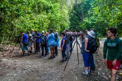 MANUEL ANTONIO, COSTA RICA - MAY 13, 2016: Crowds of tourists in National Park Manuel Antonio, Costa Ri. Ca stock images