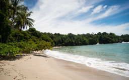Manuel Antonio Costa Rica Stock Photography