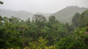 Manuel Antonio National Park Imagen de archivo libre de regalías