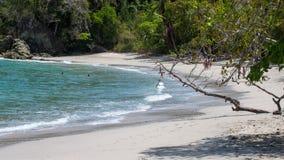 Manuel Antonio park narodowy Zdjęcia Royalty Free