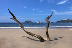 Manuel Antonio Strand, Costa Rica Lizenzfreies Stockbild