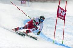 Manuel Feller. BANSKO, BULGARIA - FEBRUARY 24: Manuel Feller AUT competing in Audi FIS Alpine Ski World Cup Men`s Giant Slalom on February 24, 2019 in Bansko stock photography