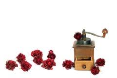 Manuell kaffekvarn med rosor på en vit bakgrund antiquaryen arkivbild