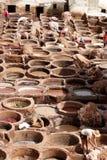 Manuella arbetare som arbetar läder som dör vats i Fez, Marocko Arkivfoton