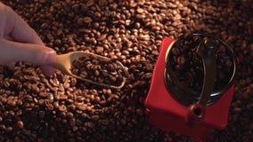 Manuelle Kaffeemühle der Draufsichtweinlese mit Bohnen Hand gießt Kaffeebohnen mit einem hölzernen Löffel stock footage