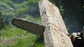 Manuelle Kettensäge schneidet ein hölzernes Brett, Makroschießen, der Hintergrund wird verwischt stock video