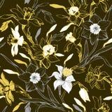 Manuelles grafisches nahtloses Muster mit Handgezogenen Blumennarzissen lizenzfreies stockfoto