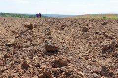 Manuellt plantera av potatisar royaltyfri fotografi