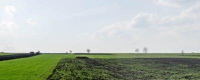 Manuellt plantera av skördar i jorden arkivfoton