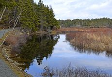 Manuels River scenic landscape in Spring. Nature scene along the Manuels river hiking trail at Conception Bay South, Newfoundland Canada stock photography