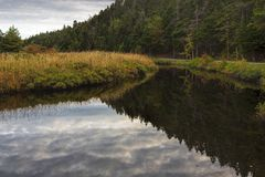 Manuels River walking trail. Conception Bay South, Newfoundland and Labrador, Canada. Autumn colors and reflections on the river trail royalty free stock photo