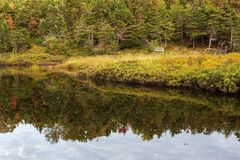Manuels River walking trail. Conception Bay South, Newfoundland and Labrador, Canada. Autumn colors and reflections on the river trail royalty free stock photos