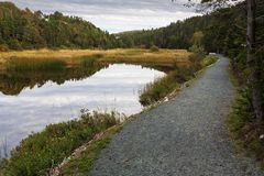 Manuels River walking trail. Conception Bay South, Newfoundland and Labrador, Canada. Autumn colors and reflections on the river trail royalty free stock image