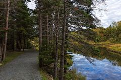 Manuels River walking trail. Conception Bay South, Newfoundland and Labrador, Canada. Autumn colors and reflections on the river trail stock image