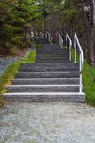 Manuels River walking trail. Steps, Conception Bay South, Newfoundland and Labrador, Canada royalty free stock photos