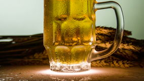 Manufacture of Beer stock video footage