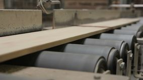 Production line in woodworking factory stock footage