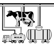 Manufacture of milk Royalty Free Stock Images