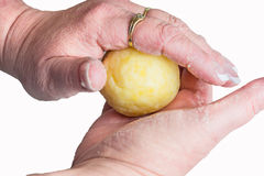 Manufacture a potato dumpling Stock Photography