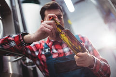 Manufacturer examining beer bottle at brewery Royalty Free Stock Images