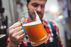 Manufacturer examining beer at brewery Royalty Free Stock Photography