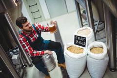 Manufacturer examining beer at brewery Stock Photos