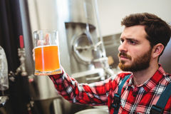 Manufacturer examining beer at brewery Stock Images