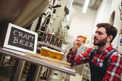 Manufacturer examining beer in brewery Stock Photography