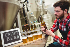 Manufacturer examining beer in brewery Stock Photos