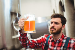 Manufacturer examining beer in jug at brewery Stock Photo