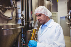 Manufacturer examining beer in test tube at brewery Stock Images