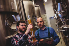 Manufacturer inspecting beer in tube with worker. At brewery Stock Images