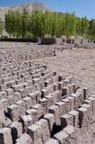 Manuifacture для делать кирпичи глины, Ladakh, Индию Стоковое Фото
