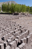 Manuifacture for making clay bricks, Ladakh, India Stock Photo