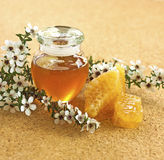 Manuka honey. In a glass jar with manuka tree flowers and honeycomb on a wooden background stock images
