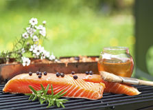Manuka and honey smoked salmon. Fresh salmon with spices and honey on smoking rack outdoors. Wood chips and manuka flowers on background. Smoking salmon New royalty free stock photo