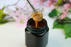 Manuka honung Arkivbilder