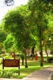 Manukan Island catwalk and trees in Sabah, Malaysia Stock Image
