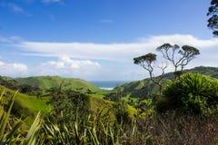 Manukau cape. Near to Auckland city, at west coast Royalty Free Stock Photo