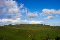 Manukau cape. Near to Auckland city, at west coast Royalty Free Stock Image