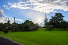 Manukau cape. Near to Auckland city, at west coast Royalty Free Stock Images