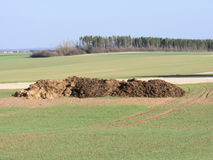 Manure Royalty Free Stock Images