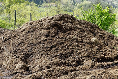 Manure Stock Photo