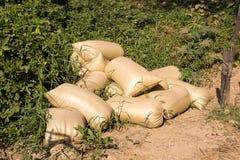 Manure bag. To fertilize vegetables planting royalty free stock images