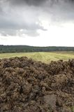 Manure heap. A manure heap in front of a harvested field under a cloudy sky royalty free stock images