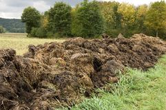 Manure heap. A manure heap beside a harvested field under a cloudy sky royalty free stock photo