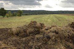Manure heap. A manure heap in front of a harvested field under a cloudy sky stock image