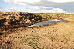 Manure heap Stock Images