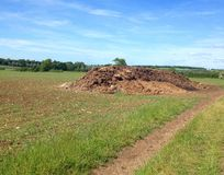 Manure heap in a field. Royalty Free Stock Photos