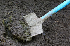 Manure with spade Stock Image